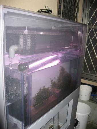 隔離水槽付Ecoは初めてです
