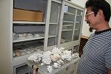サンゴの同定は骨格標本で調べるとおしえてくれる岩瀬さん。